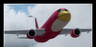 Angry Birds | Aviation Humor