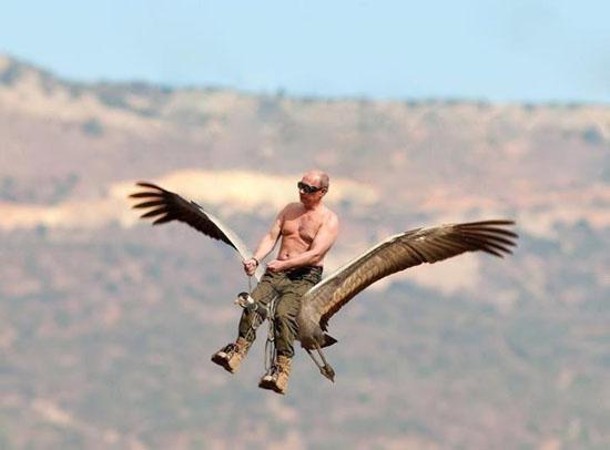 russian president putin teaching endangered cranes to fly aviation