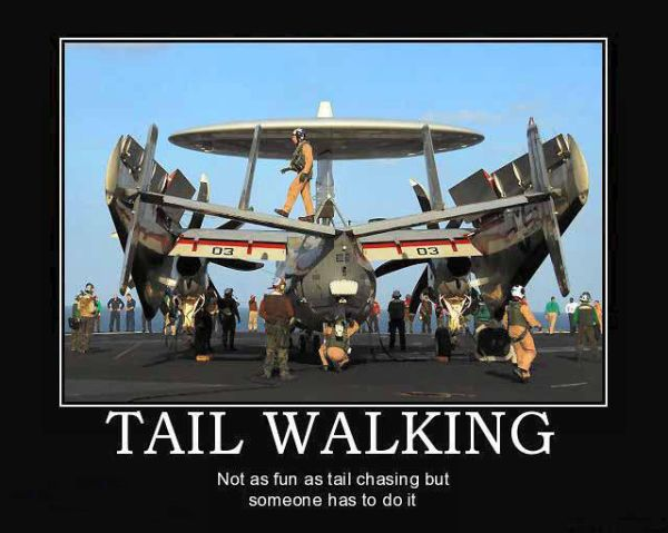 military humor funny joke air force navy aircraft carrier tail walking tail walking not as fun as tail chasing but someone has to do it,Funny Airplane Jokes