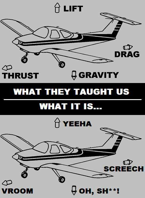 What they taught us