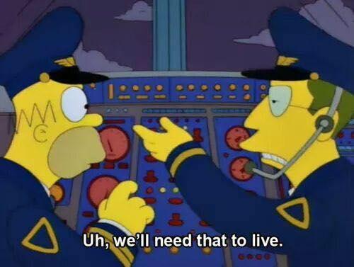 Homer, The Pilot