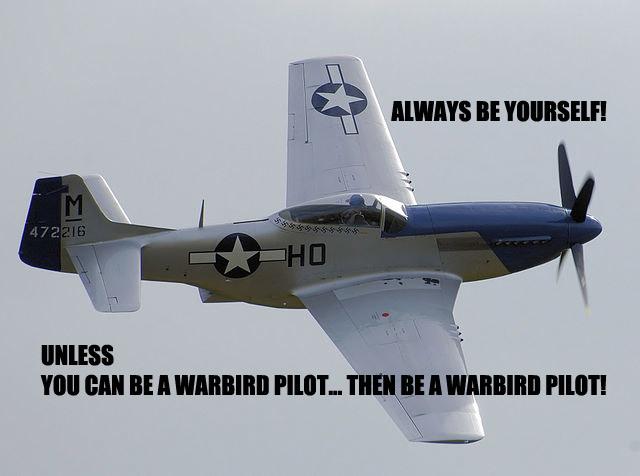 Warbird pilot