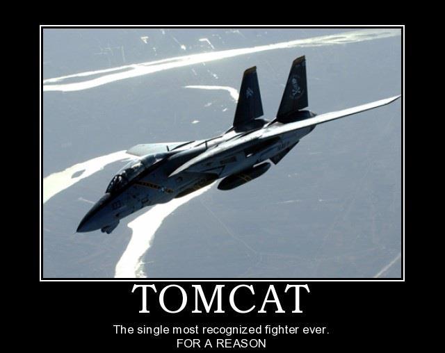 military-humor-tomcat-fighter