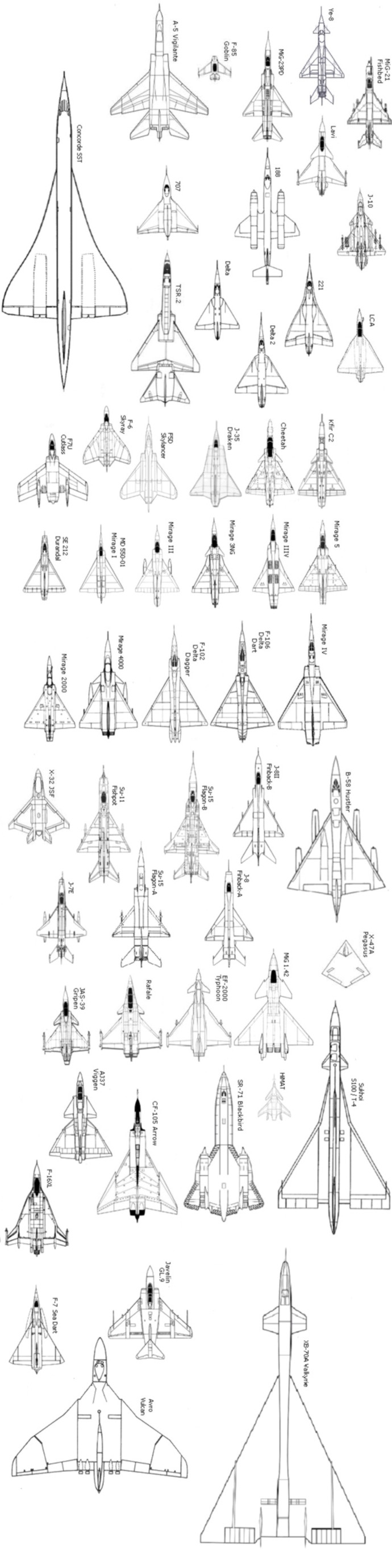 The delta wing and its variants