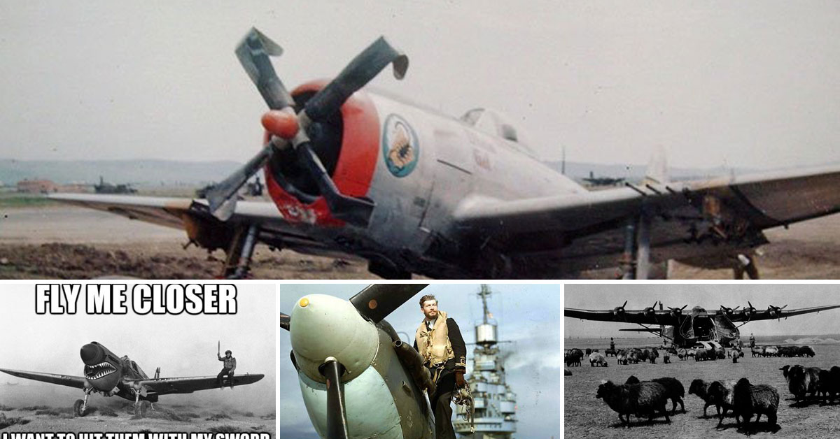 World War Ii In Pictures And Memes